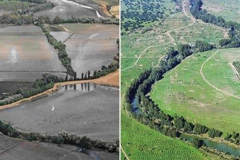 Guadiamar El Guadiamar Historia de un corredor verde Pensando el territorio