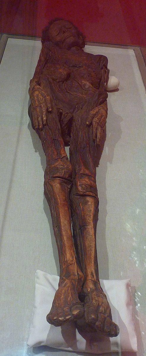 Guanche mummy of Madrid