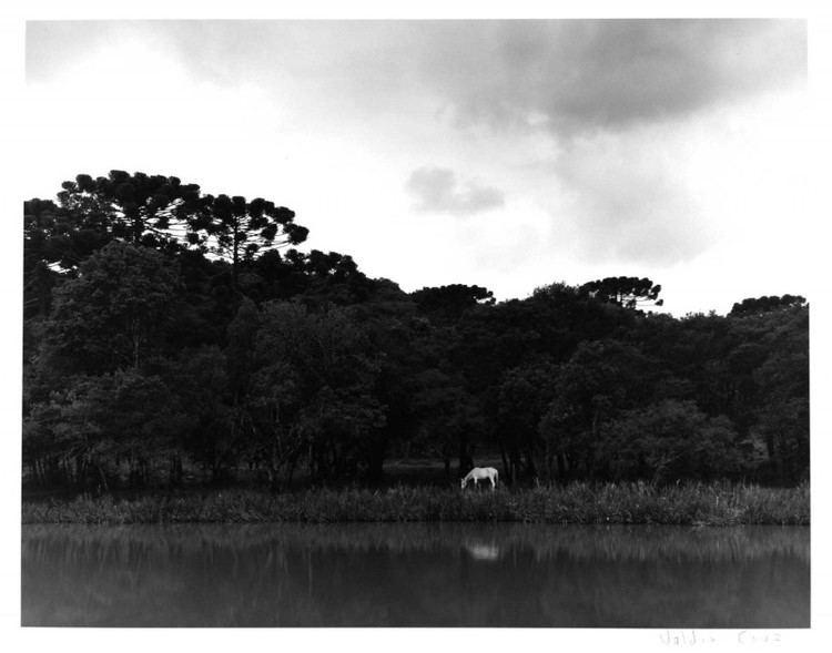 Guarapuava Beautiful Landscapes of Guarapuava