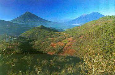Guatemalan Highlands Focus On Nature Tour in Guatemala December January