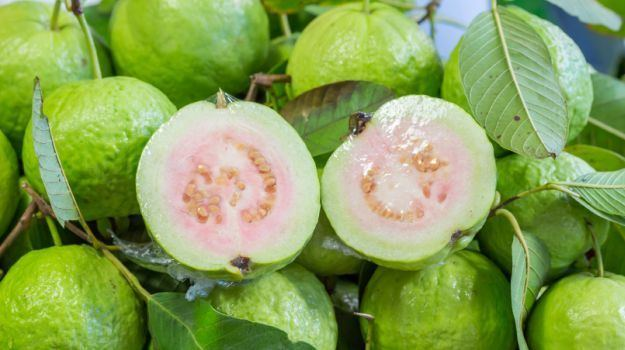 Guava 15 Amazing Guava Benefits Heart Healthy Weight Loss Friendly and