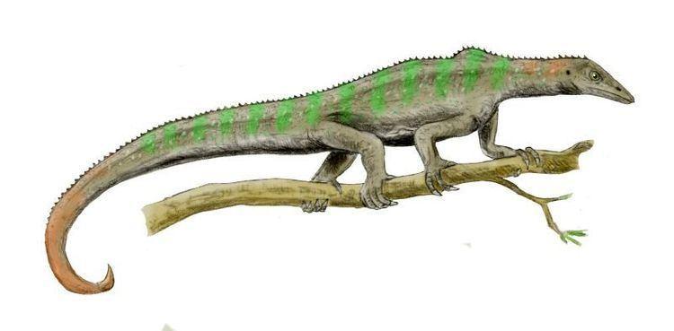 Guchengosuchus