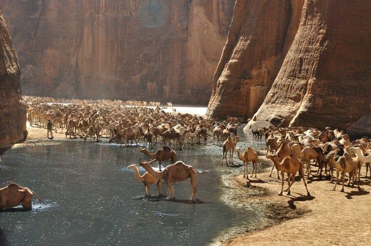 Guelta d'Archei whenonearthnetwpcontentuploads2014048413120