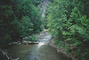 Guest River httpsuploadwikimediaorgwikipediaenthumb1