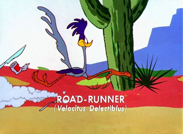 Guided Muscle Looney Tunes Pictures Wile E Coyote Guided Muscle Bugs bunny