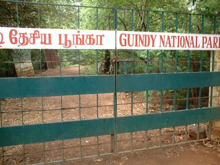 Guindy uploadwikimediaorgwikipediacommonscc9Guindy