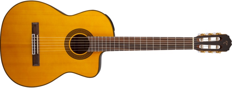 Guitar Takamine Guitars GSeries Guitars