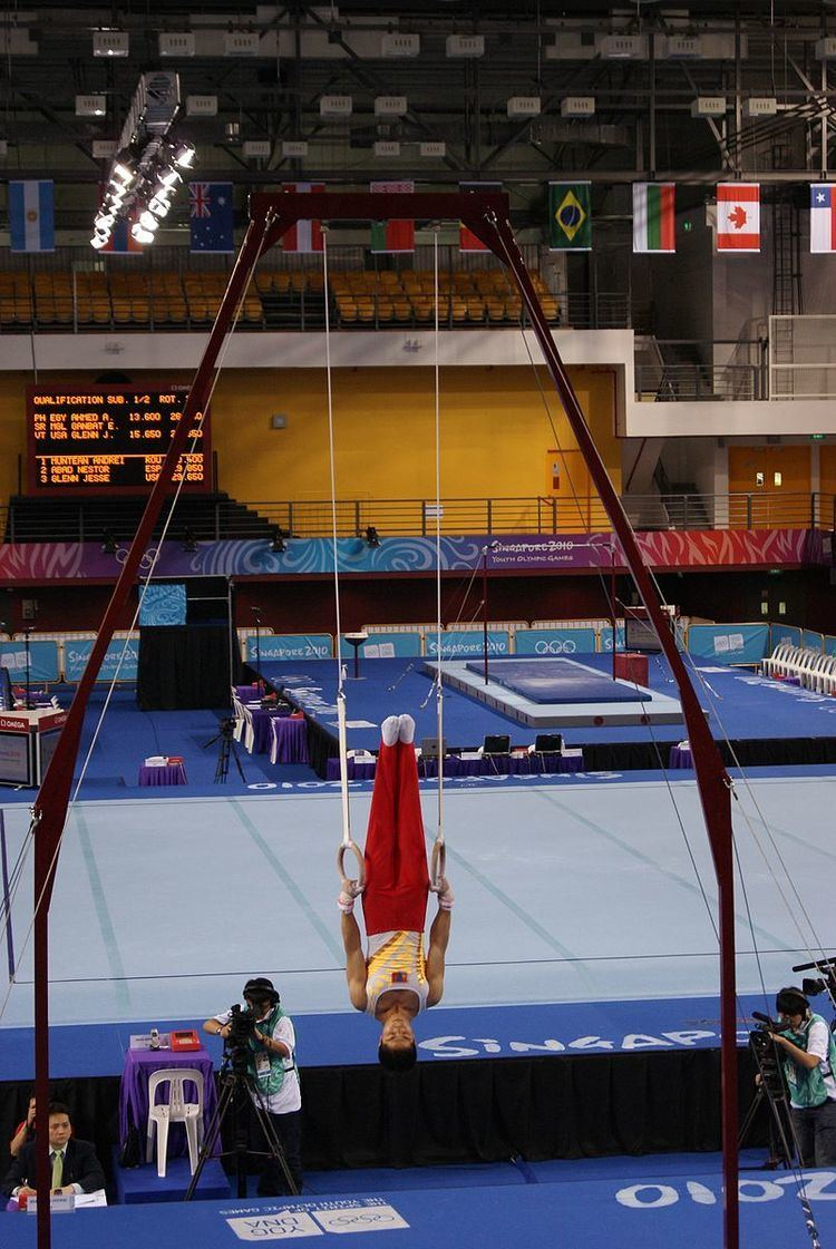 Gymnastics at the 2010 Summer Youth Olympics – Men's rings