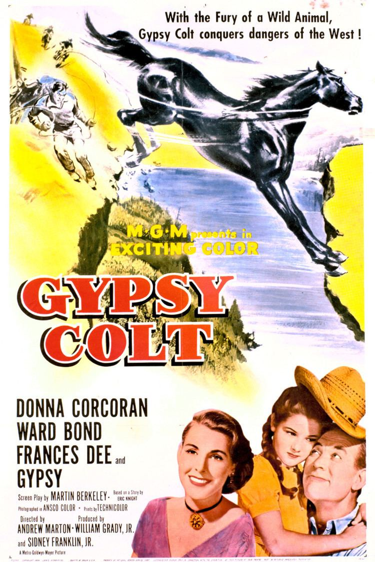 Gypsy Colt wwwgstaticcomtvthumbmovieposters5178p5178p