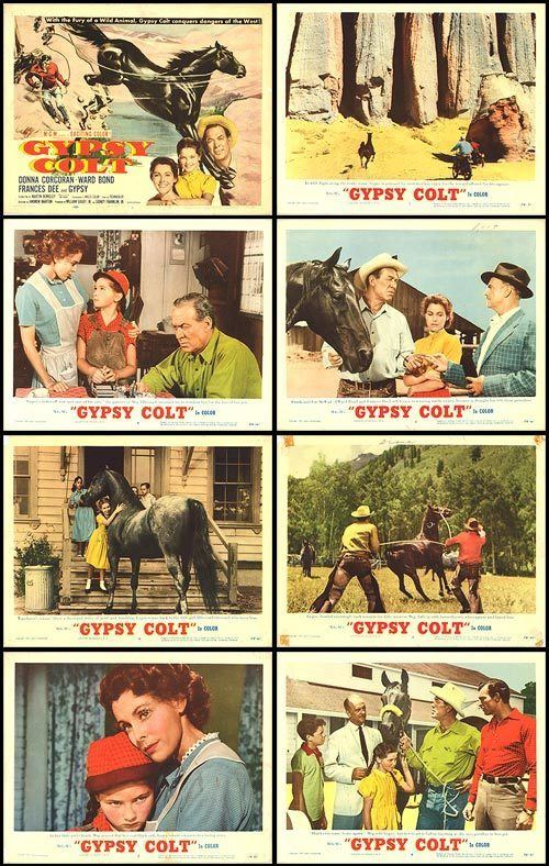 Gypsy Colt Gypsy Colt movie posters at movie poster warehouse moviepostercom