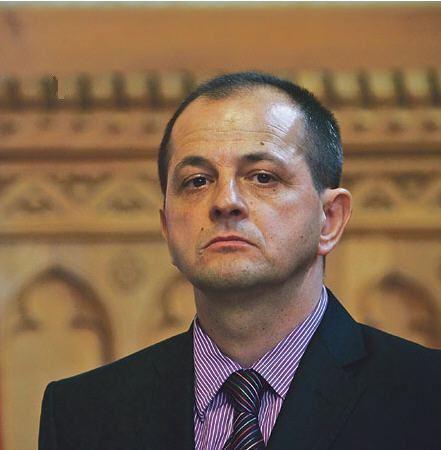 Gyula Budai The failure of Gyula Budais investigations of corruption