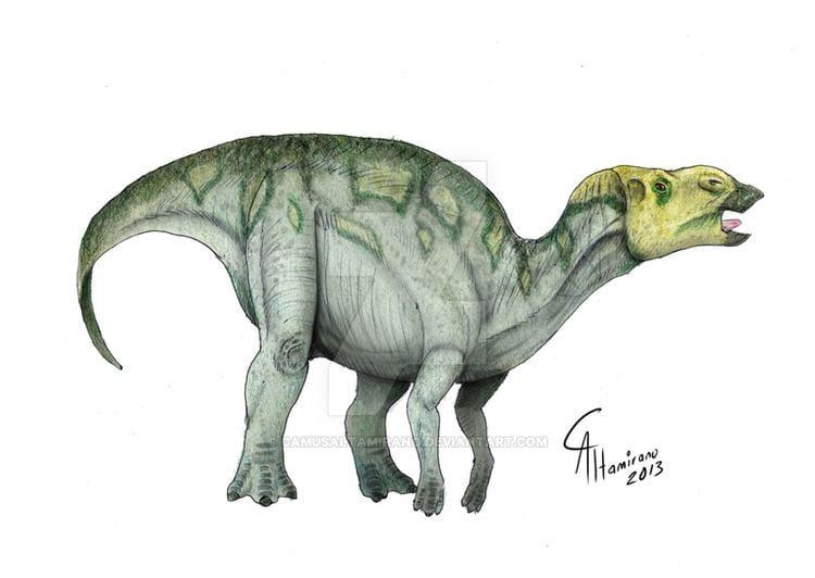 Hadrosaurus Hadrosaurus Facts and Pictures
