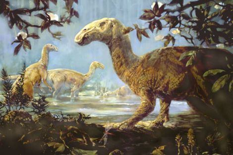 Hadrosaurus dinosaur pictures Hadrosaurus