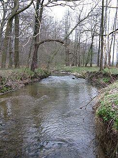 Haferbach httpsuploadwikimediaorgwikipediacommonsthu