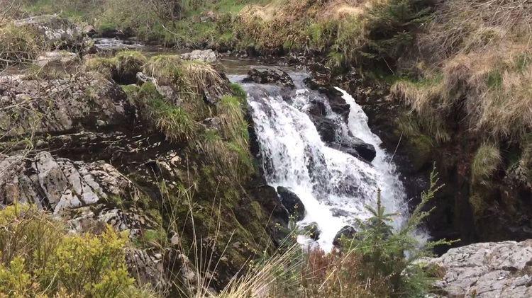 Hafren Forest Hafren Forest Llanidloes Mid Wales UK