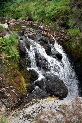 Hafren Forest Llanidloes Mid Wales Hafren Forest