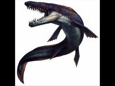 Hainosaurus Hainosaurus YouTube