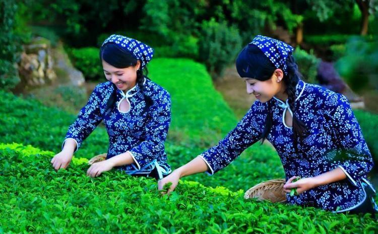 Hakha Culture of Hakha