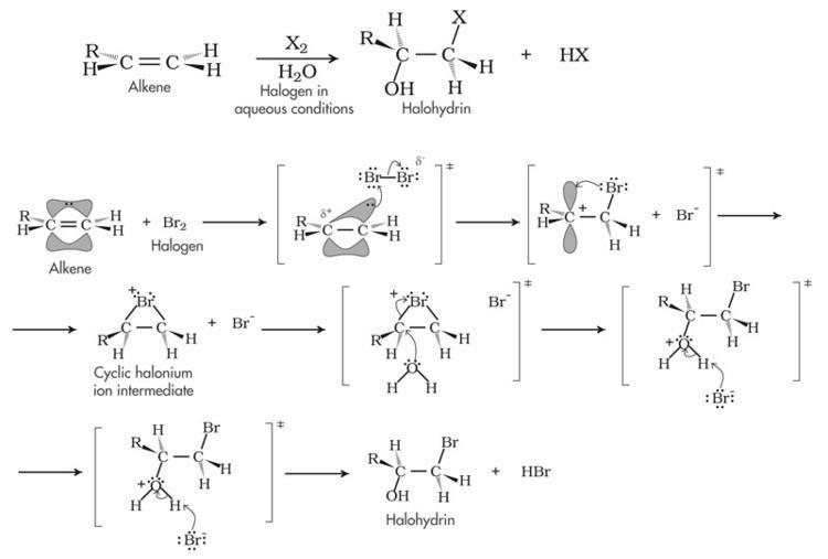 Halohydrin Organic Mechanisms with Biochem Examples
