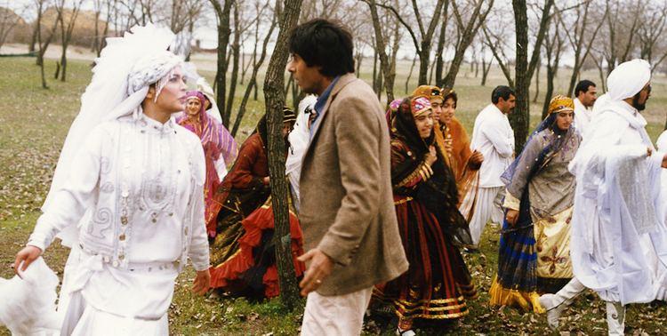 Hamoun (film) I for Iran A History of Iranian Cinema Hamoun Review Next Projection