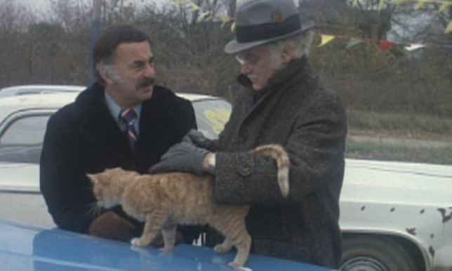 Harry and Tonto Harry Tonto 1974 Cinema Cats