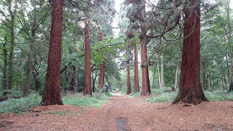 Havering Country Park
