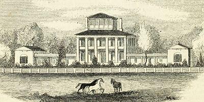 Hayes Plantation Johnston James Cathcart NCpedia
