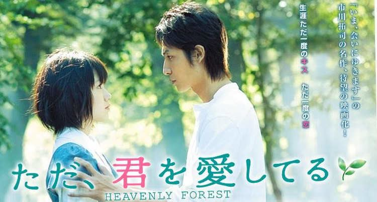 Heavenly Forest The Keizou Journal Review Heavenly Forest