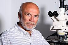 Heinrich Reichert httpsuploadwikimediaorgwikipediacommonsthu