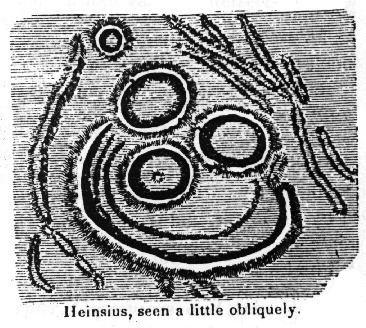 Heinsius (crater)