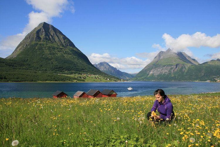 Helgeland Helgeland