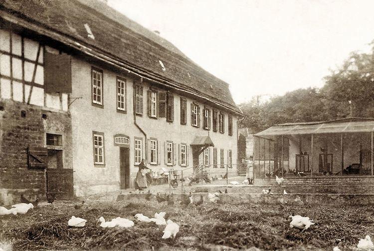 Hellmuth Lucius von Stoedten