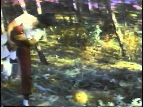 Hell's Wind Staff Hells Wind Staff 1979 FULL MOVIE Dub English WuTang Clan