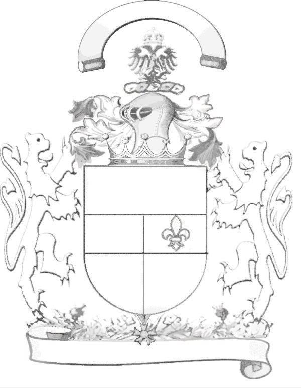 Helmet (heraldry)