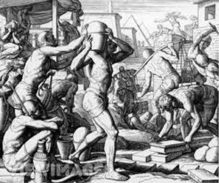 Helots The helots were a subjugated population group that formed the main