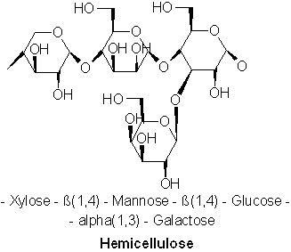 Hemicellulose httpsuploadwikimediaorgwikipediacommons66