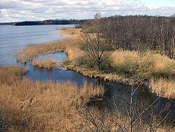Hemmelsdorfer See httpsuploadwikimediaorgwikipediacommonsthu