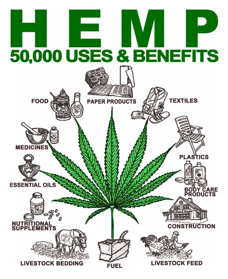Hemp Why we need Hemp Janella Purcell
