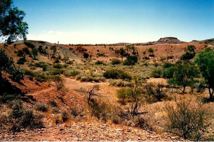 Henbury Meteorites Conservation Reserve