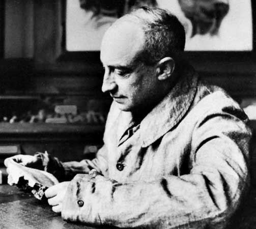 Henri Breuil Henri Breuil French archaeologist Britannicacom