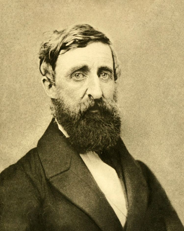 Henry David Thoreau Henry David Thoreau Wikipedia the free encyclopedia