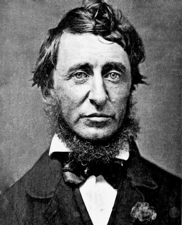 Henry David Thoreau httpsuploadwikimediaorgwikipediacommonsbb