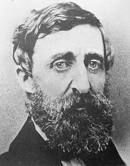 Henry David Thoreau Henry David Thoreau Panther 1856 Brattleboro History