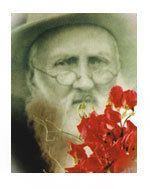 Henry Eckford (horticulturist) httpswwwshropshiretourismcoukimageshenrye