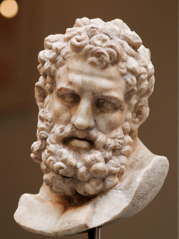 Heracles FileHeracles Farnese head Met 2712218 n02jpg