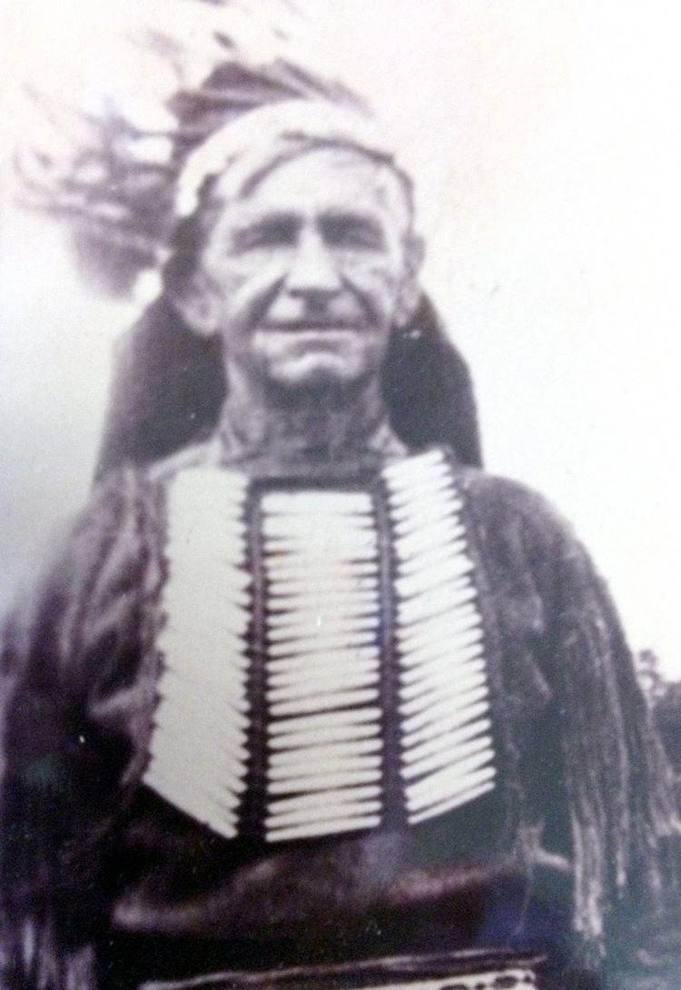 Herman Lehmann Joe Herring Jr Captured by Apaches