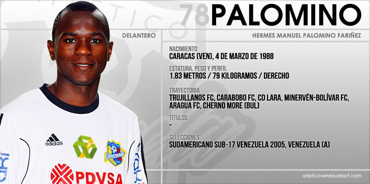 Hermes Palomino Hermes Palomino