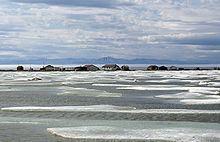 Herschel Island httpsuploadwikimediaorgwikipediacommonsthu