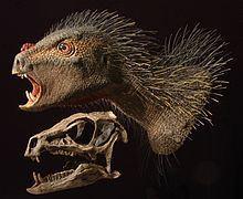 Heterodontosaurus httpsuploadwikimediaorgwikipediacommonsthu