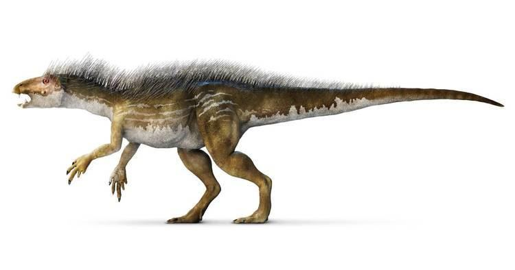 Heterodontosaurus Heterodontosaurus Facts For Kids DK Find Out